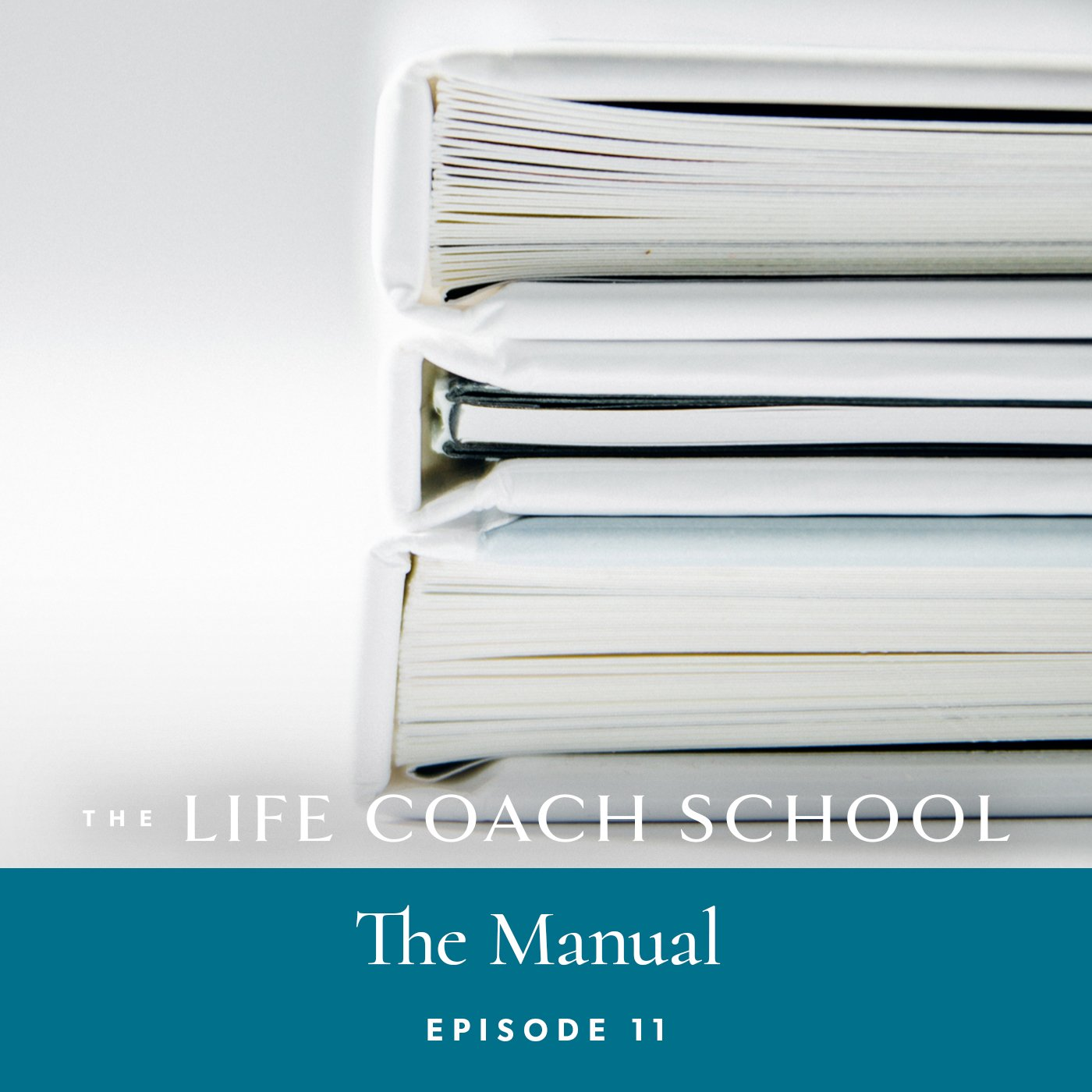 The Life Coach School Podcast with Brooke Castillo | Episode 11 | The Manual