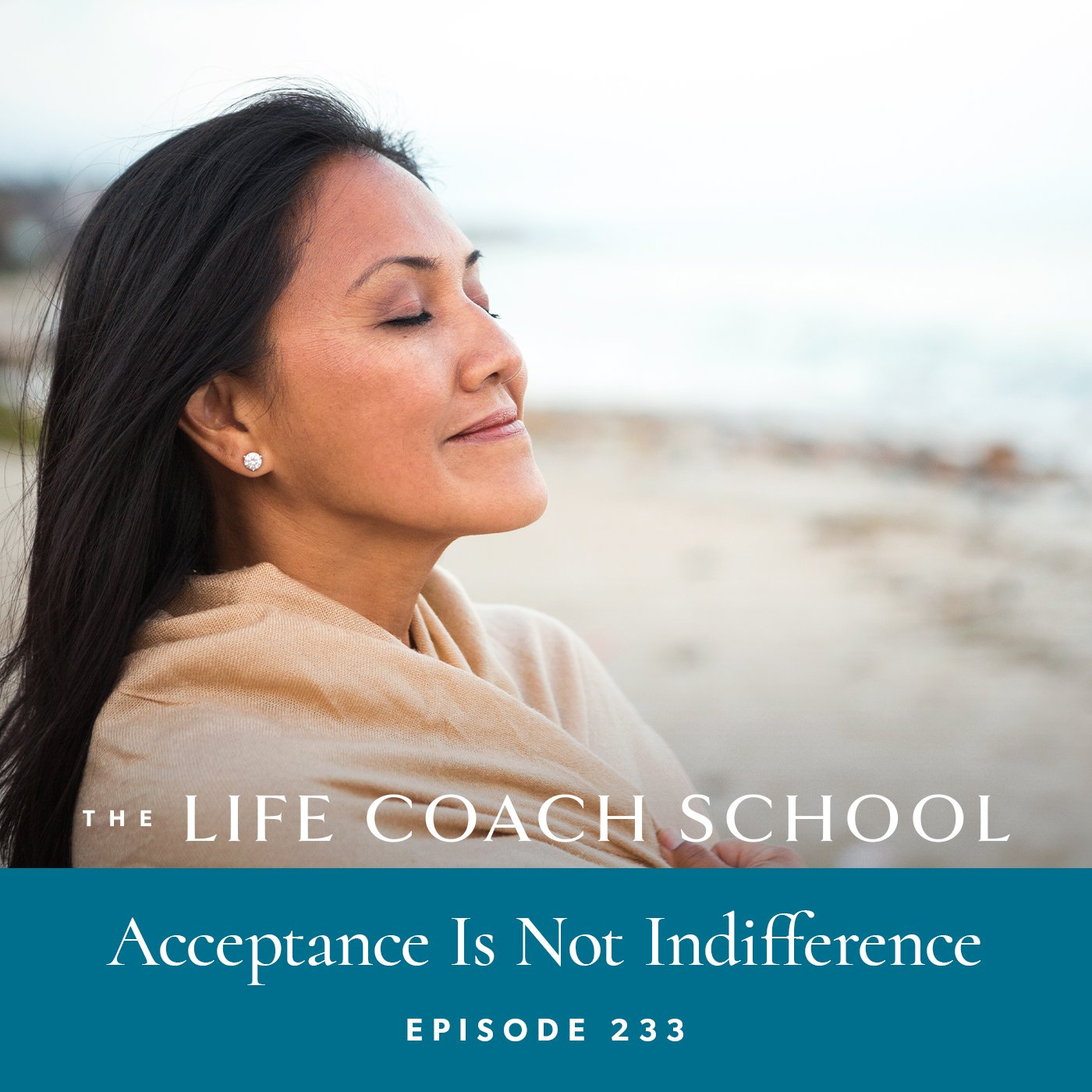 The Life Coach School Podcast with Brooke Castillo   Episode 233   Acceptance Is Not Indifference