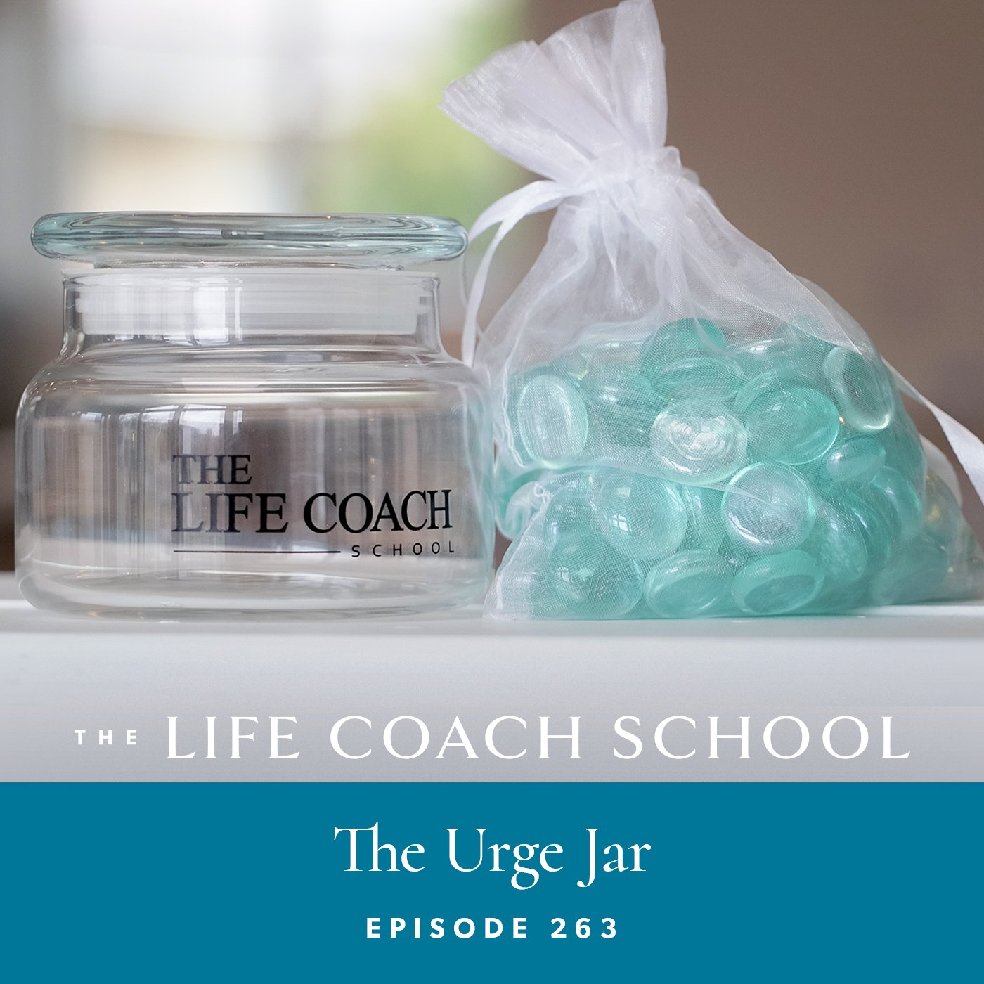 The Life Coach School Podcast with Brooke Castillo | Episode 263 | The Urge Jar