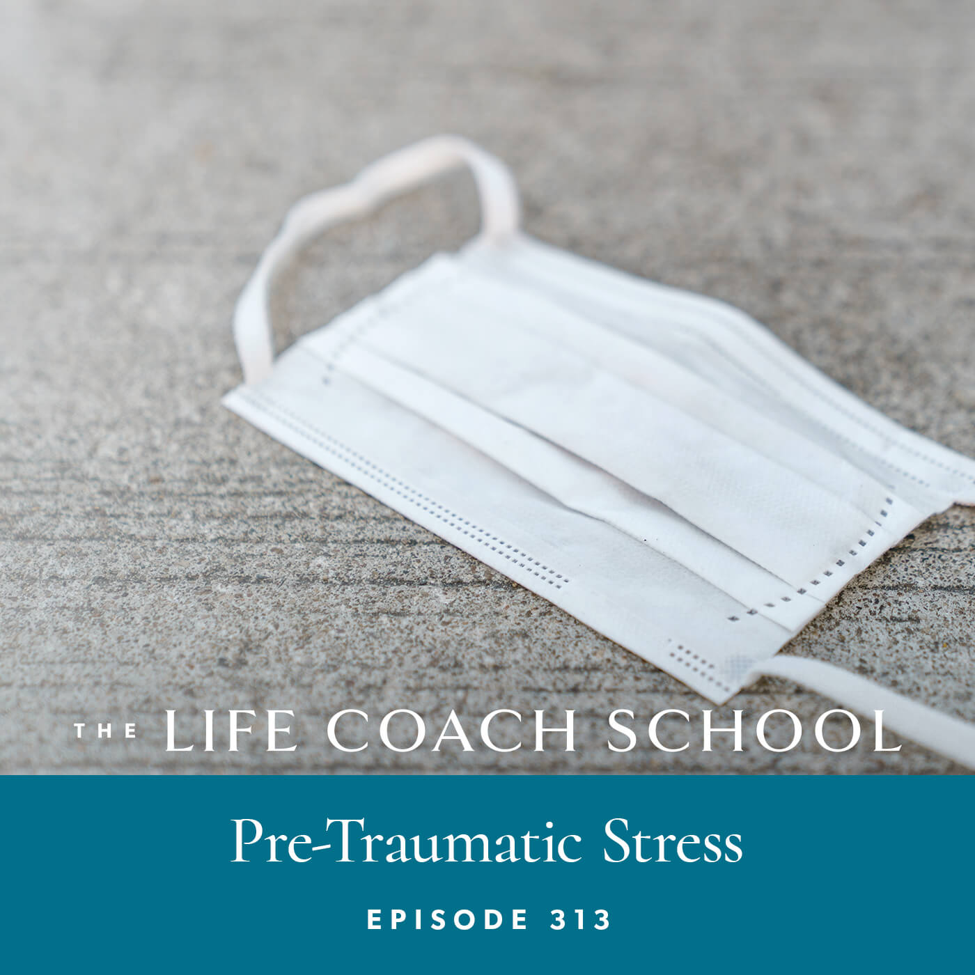 The Life Coach School Podcast with Brooke Castillo | Episode 313 | Pre-Traumatic Stress
