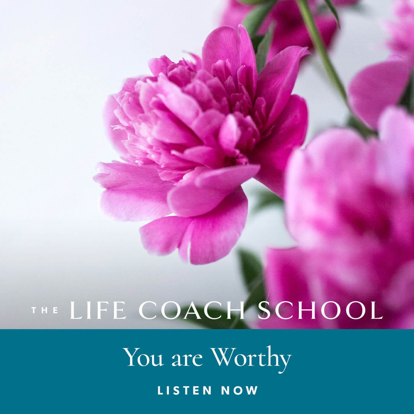 The Life Coach School Podcast with Brooke Castillo | Special Episode | You Are Worthy